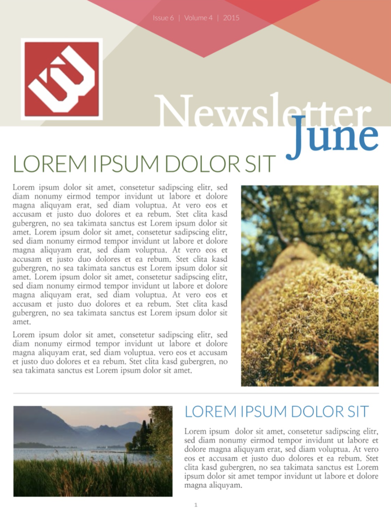 Angles newsletter template