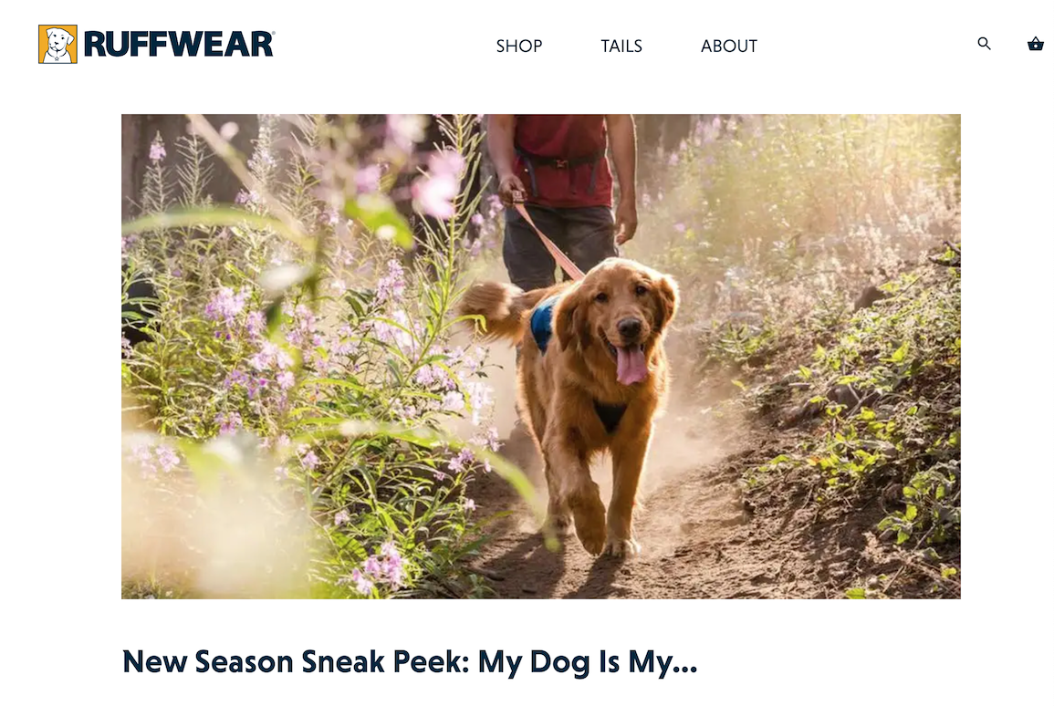 Image of Ruffwear's blog
