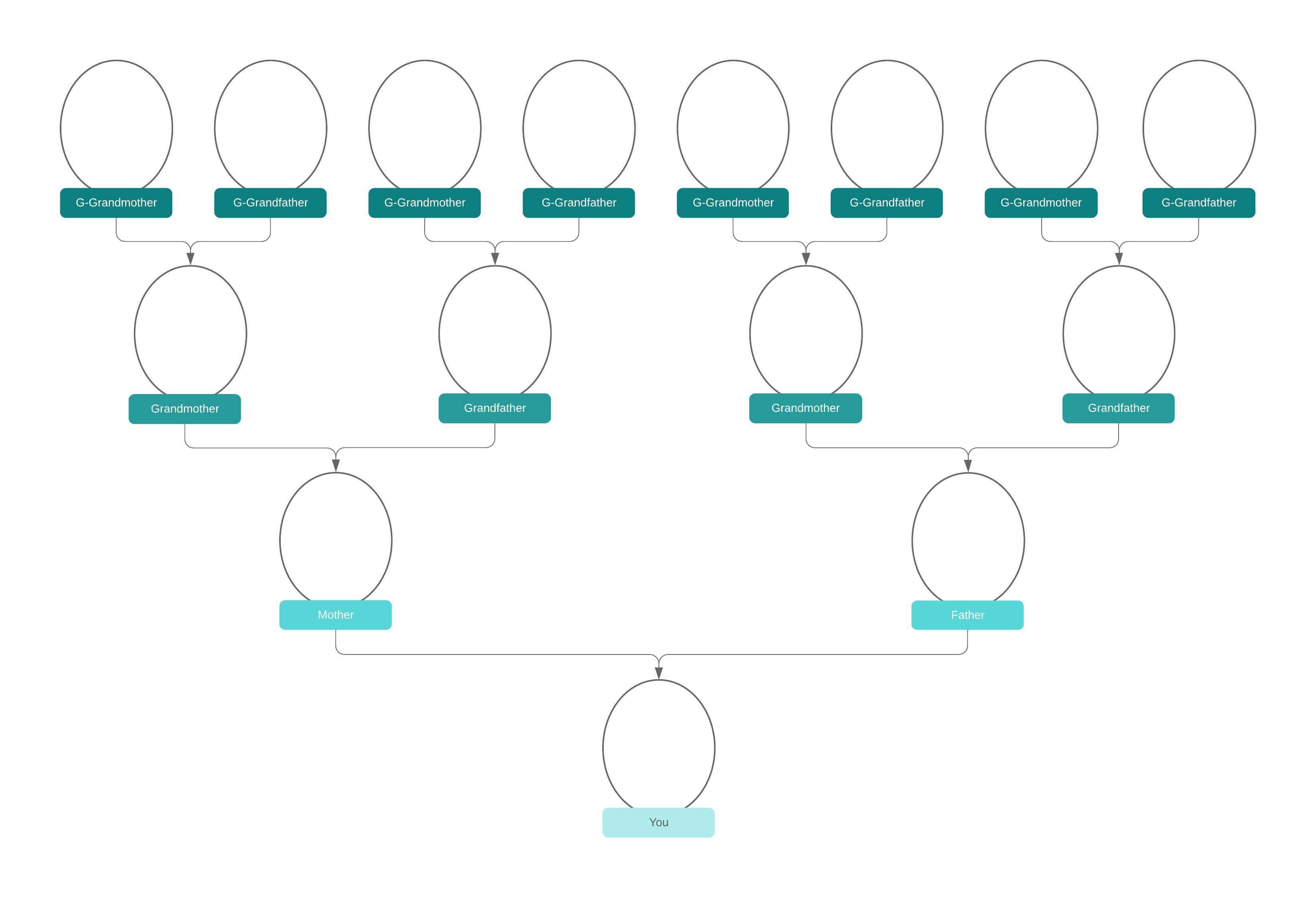 Vorlage Stammbaum Erstellen Software Kostenlos 13