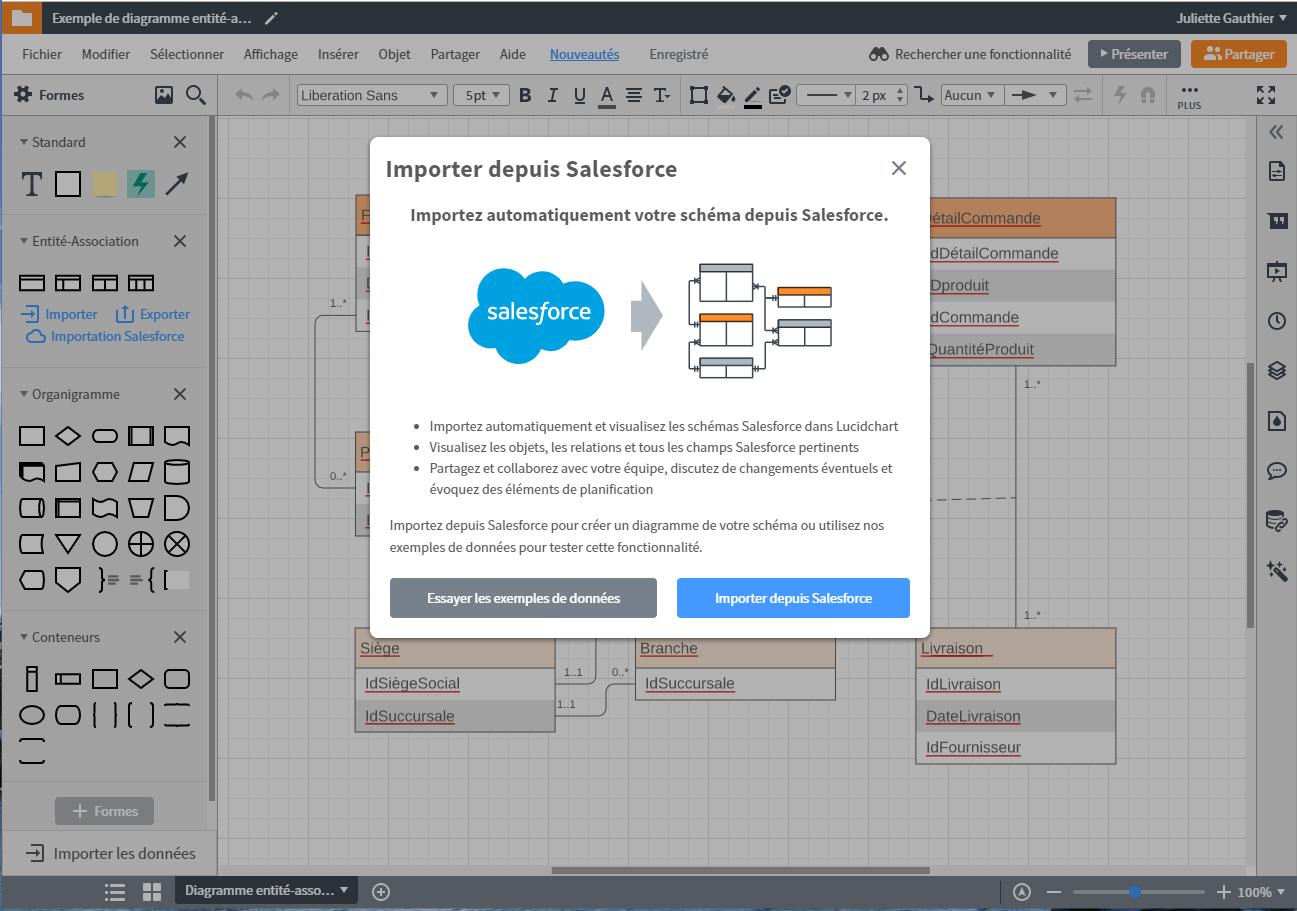 Importer votre schéma Salesforce pour faire vos diagrammes MCD