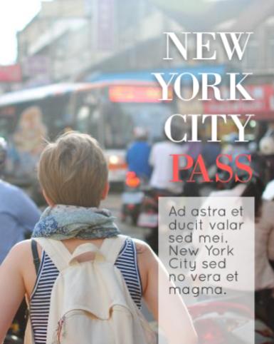 Passport Brochure Template
